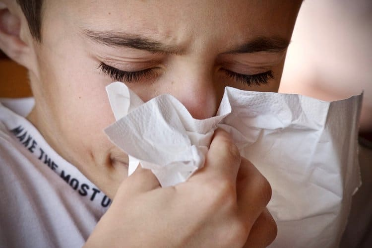 90 Percent Of Visits From Summer Pollen Sufferers Are Unnecessary