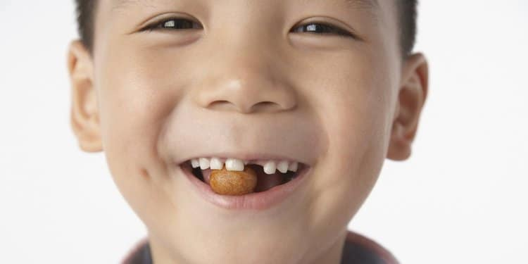 Eat Nuts And You Are 'More Likely' To Have Smarter Children!