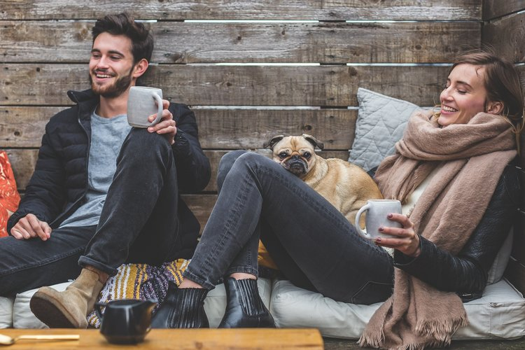things you and your dog can do together to improve mental health