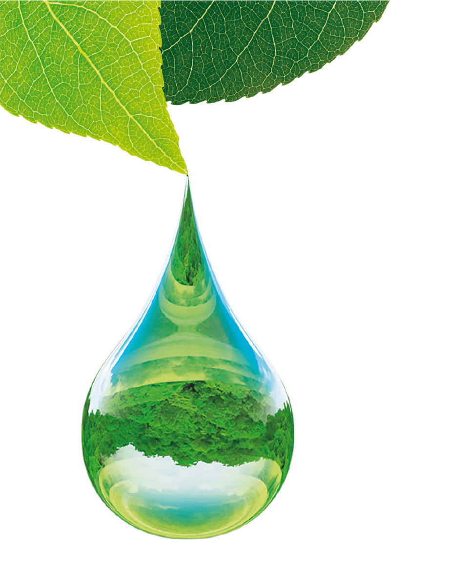 drop of water falling from leaf