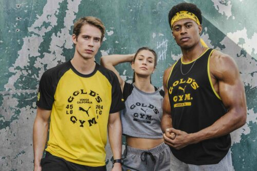 Golds Gym Collection Group