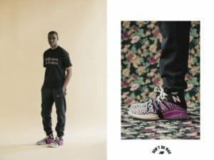 joe freshgood shoes