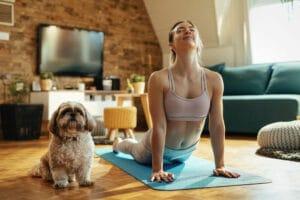 dog yoga shutterstock drazen zigic
