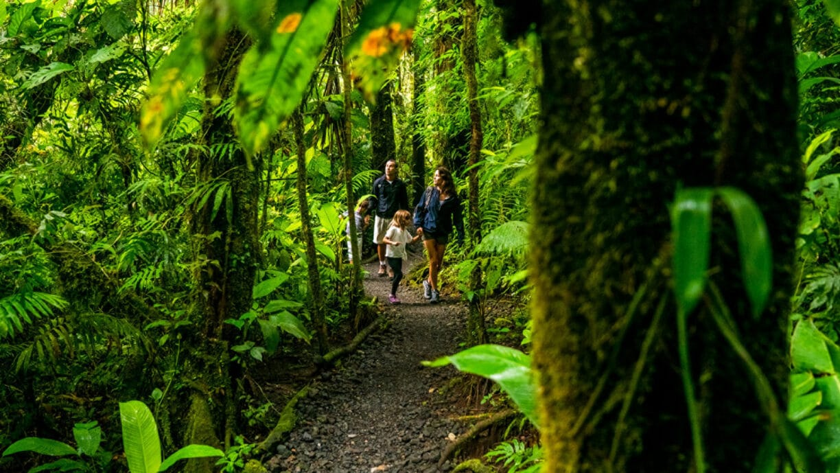 family walking through forest