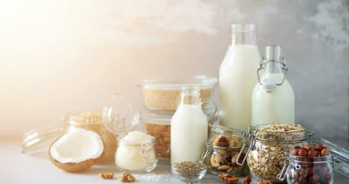 Unusual Plant-Based Milks To Try