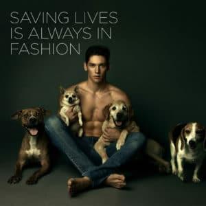 wes myron dog charity 300x300