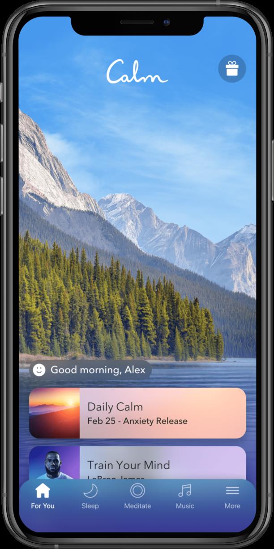 iPhone Calm Home