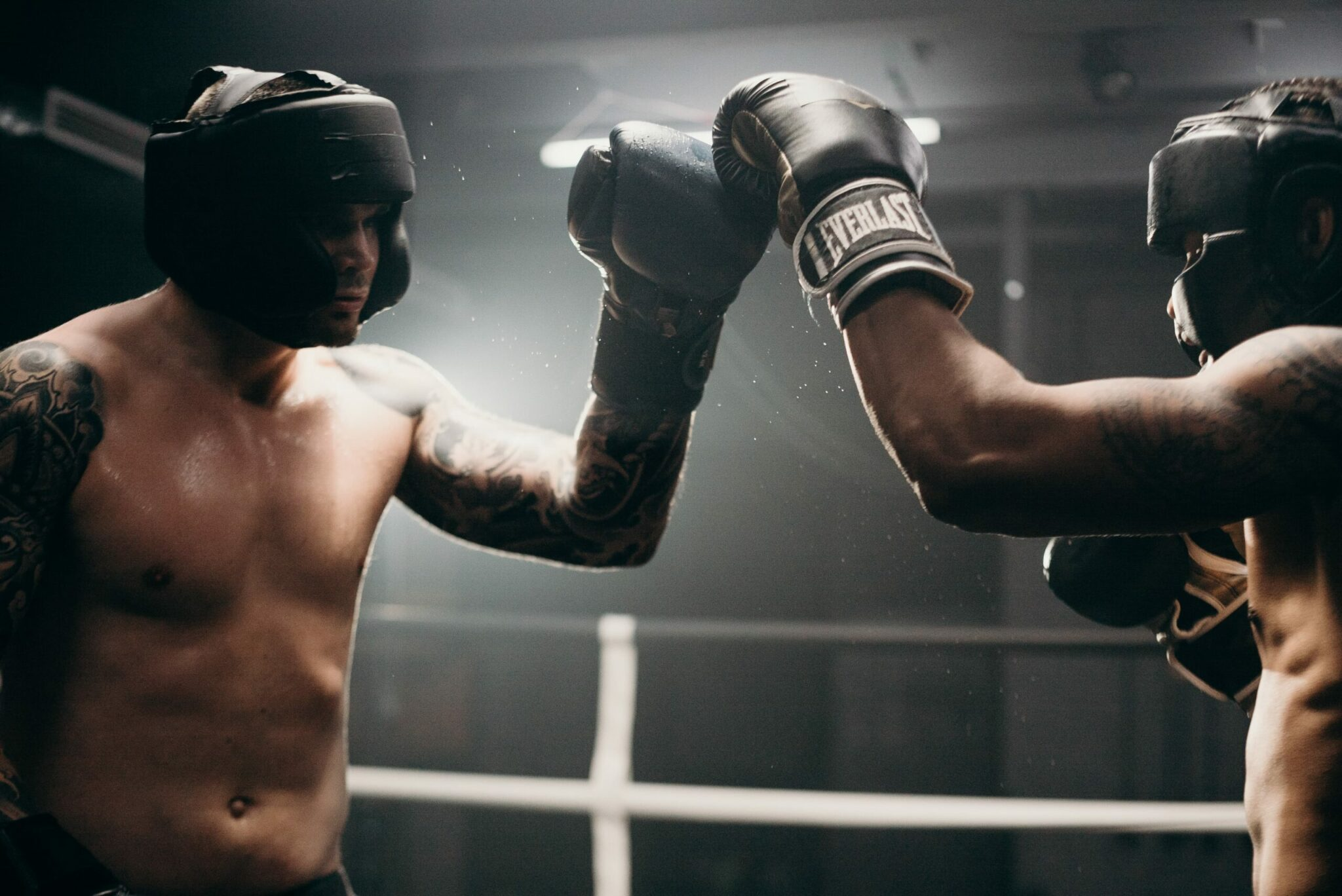boxers touch gloves scaled