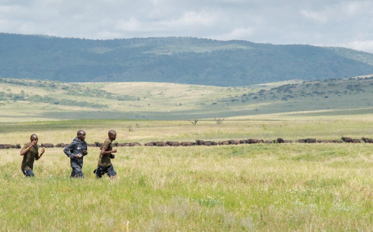Lewa Safari Marathon