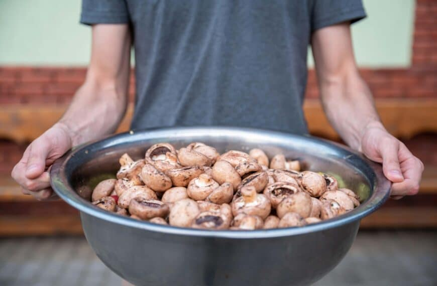 Could Mushrooms Be The Fitness-Booster You're Missing?