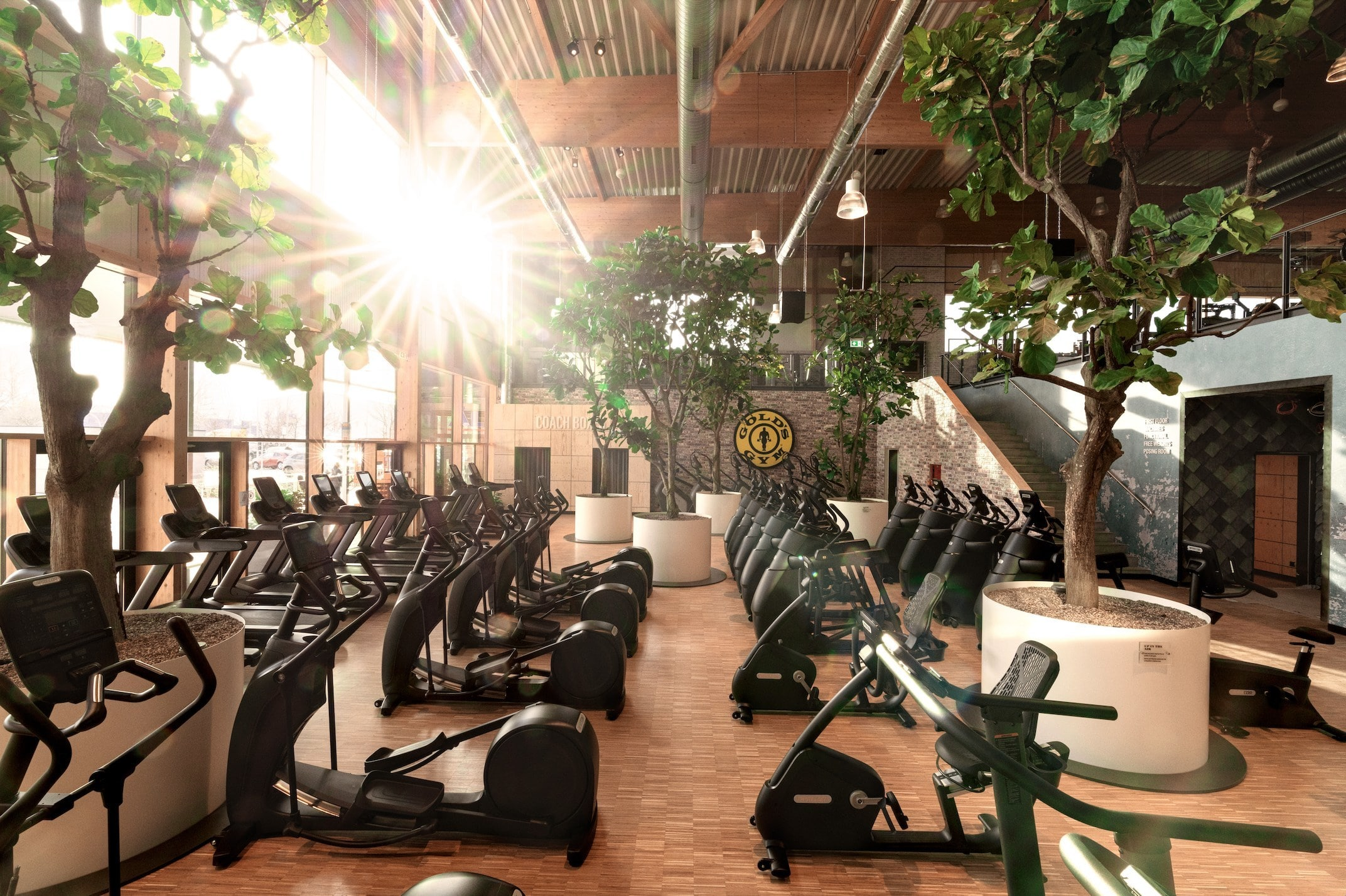 golds gym Berlin Flagship Campus
