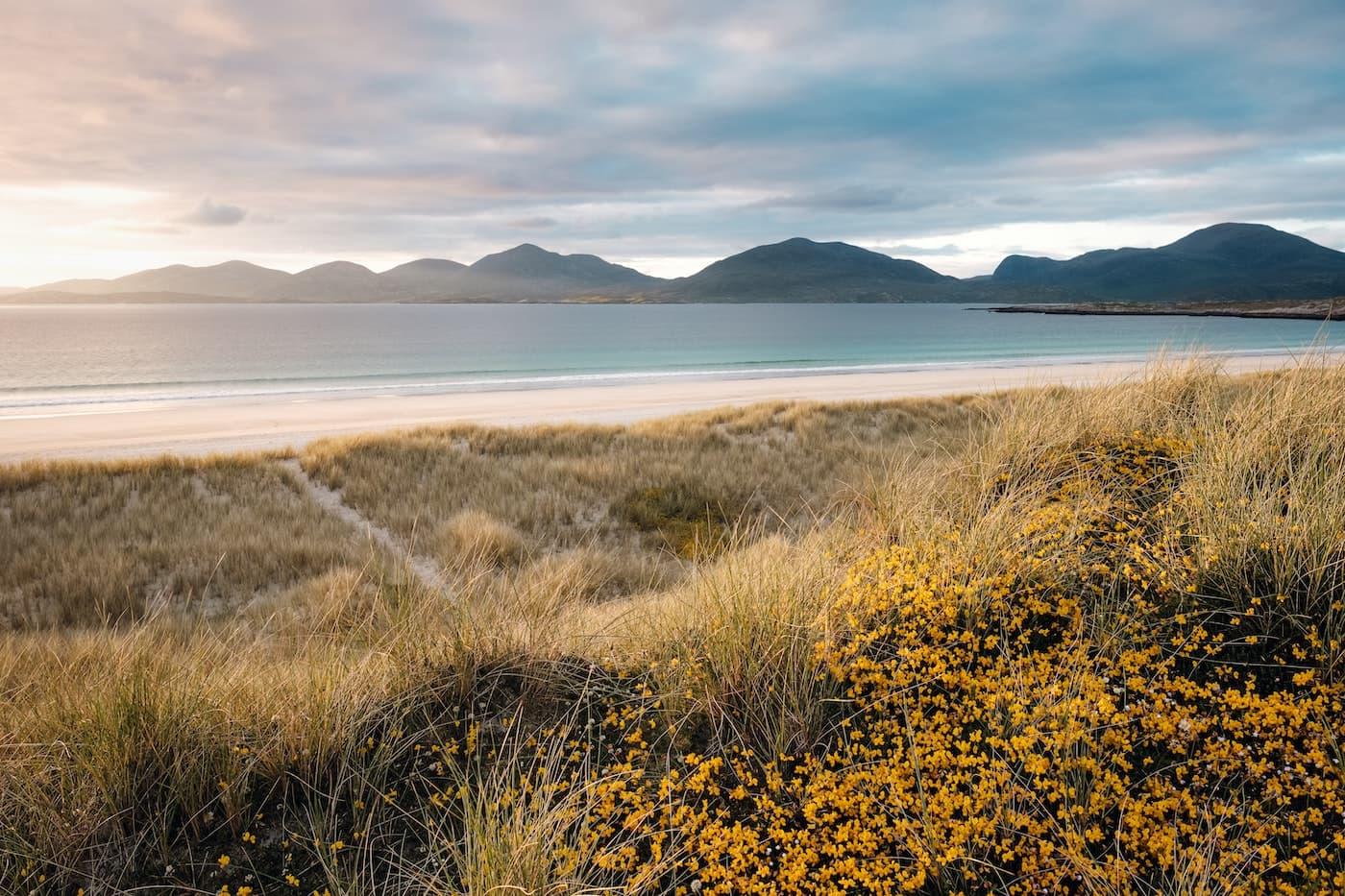 Luskentyre beach credit Nils Leonhardt via Unsplash