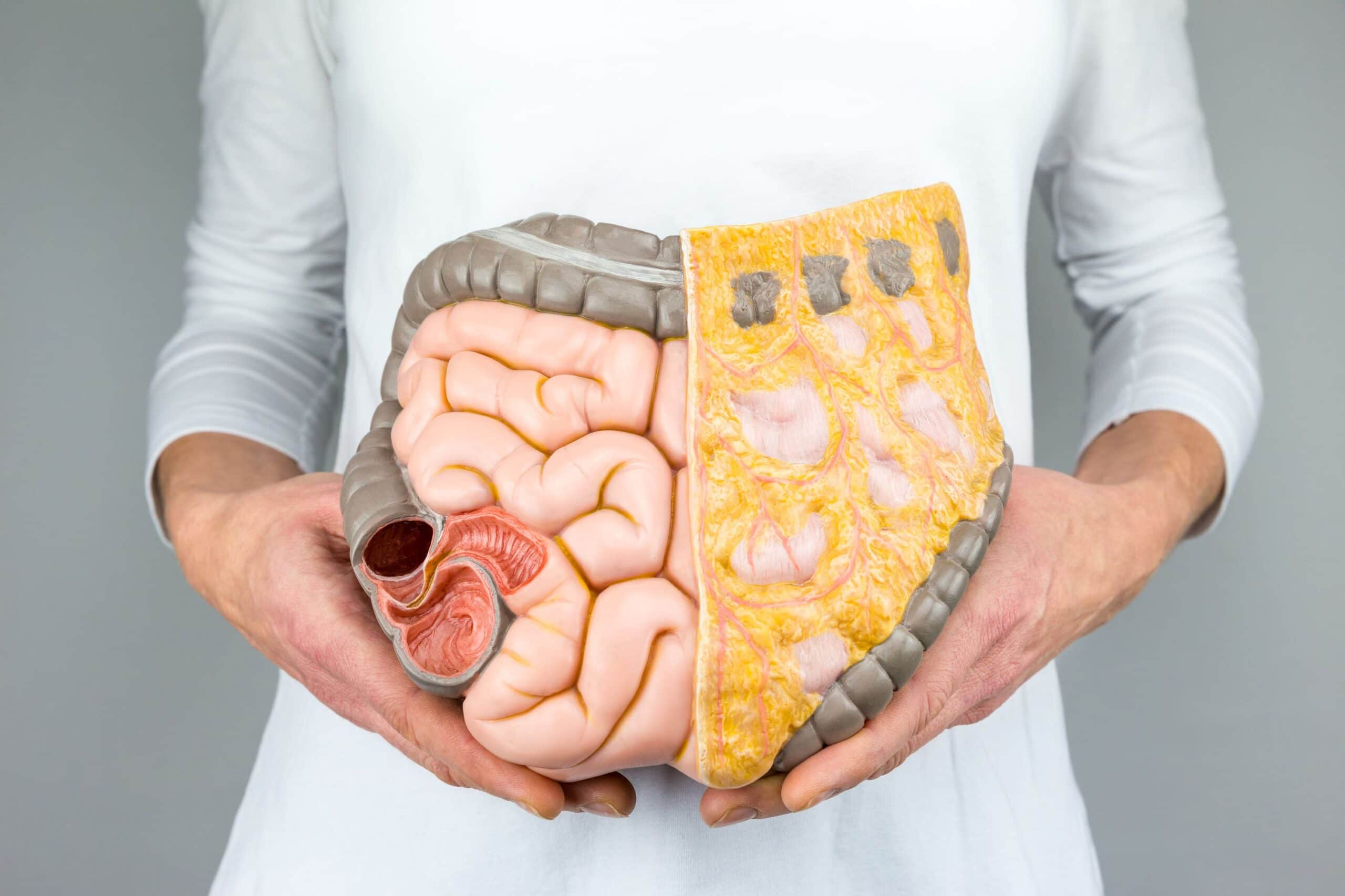 Myths About Your Gut